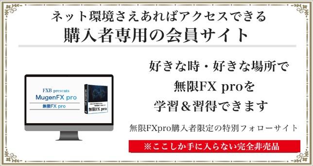 無限FX pro