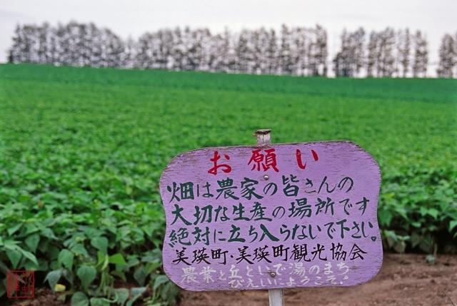 s-北海道00295