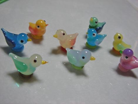 birdspicarocca