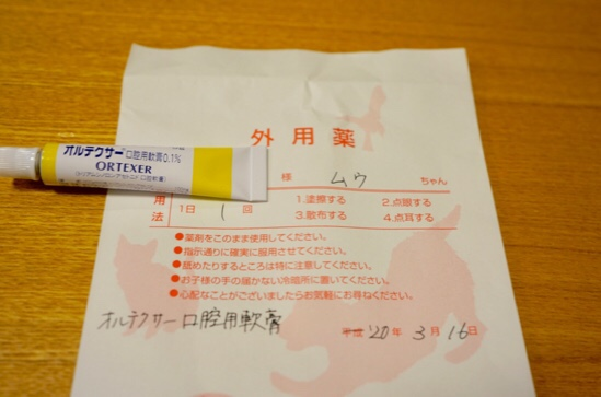 fc2blog_202003220116287ff.jpg