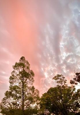 素敵な色の夕やけ
