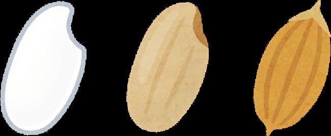 20201208 白米、玄米、籾