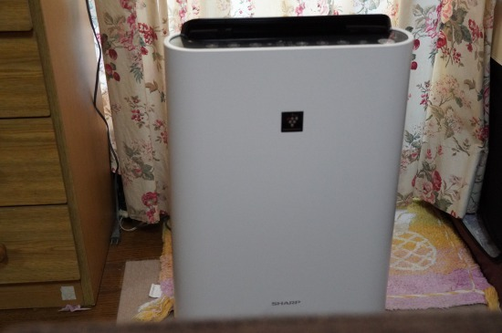 DSC01856 (1)