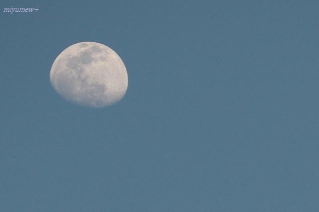 お月さま200306