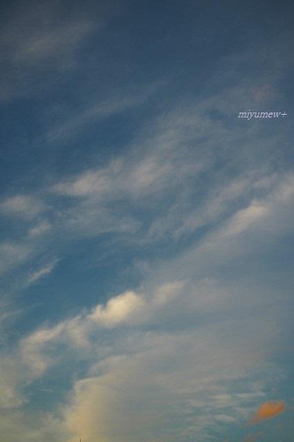 sky200714