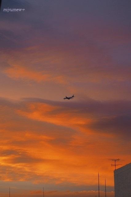 飛行機と200726