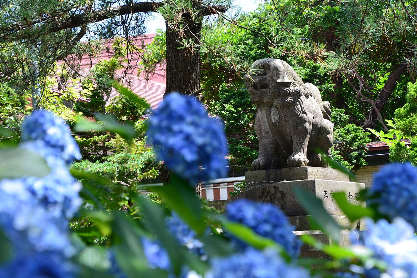 能代市柳町 八幡神社520200801
