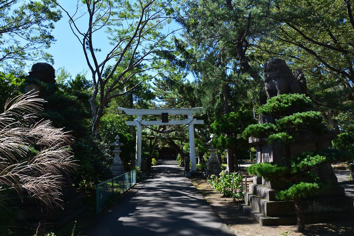 能代市柳町 八幡神社120200901