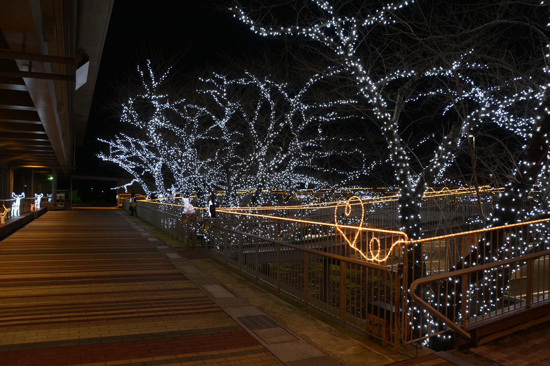 能代市役所さくら庭を彩るイルミネーション1320201207