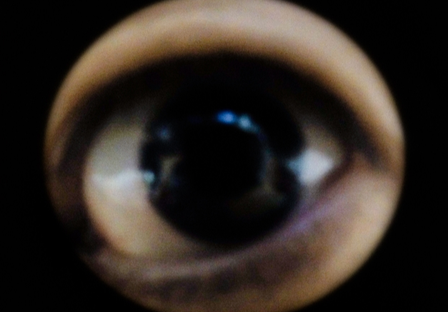 2016v6.png