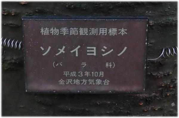 200330_2.jpg
