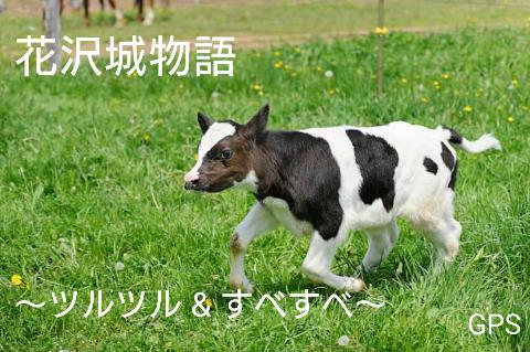『花沢城物語~ツルツル&すべすべ~』 byGPS