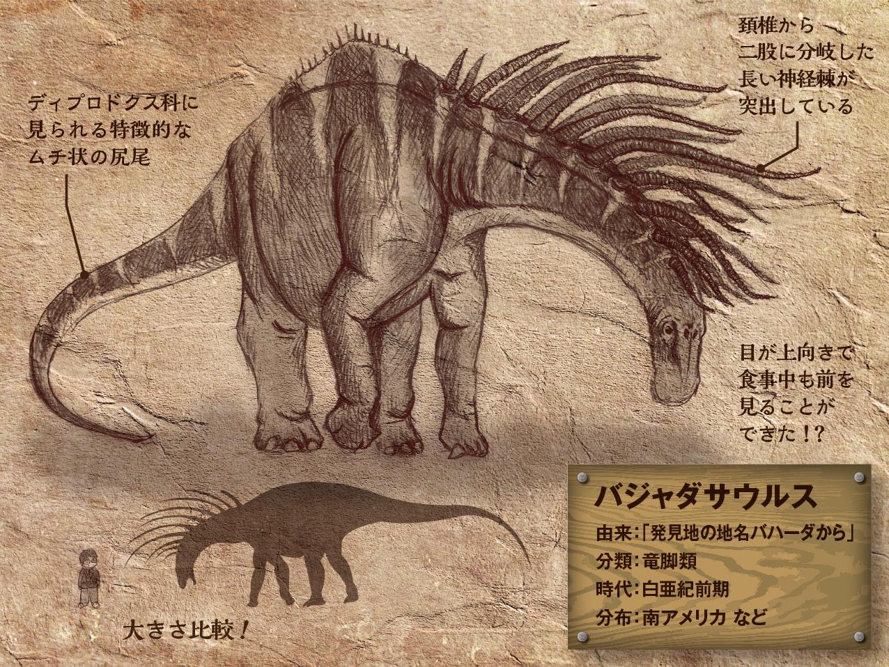 Bajadasaurus.jpg