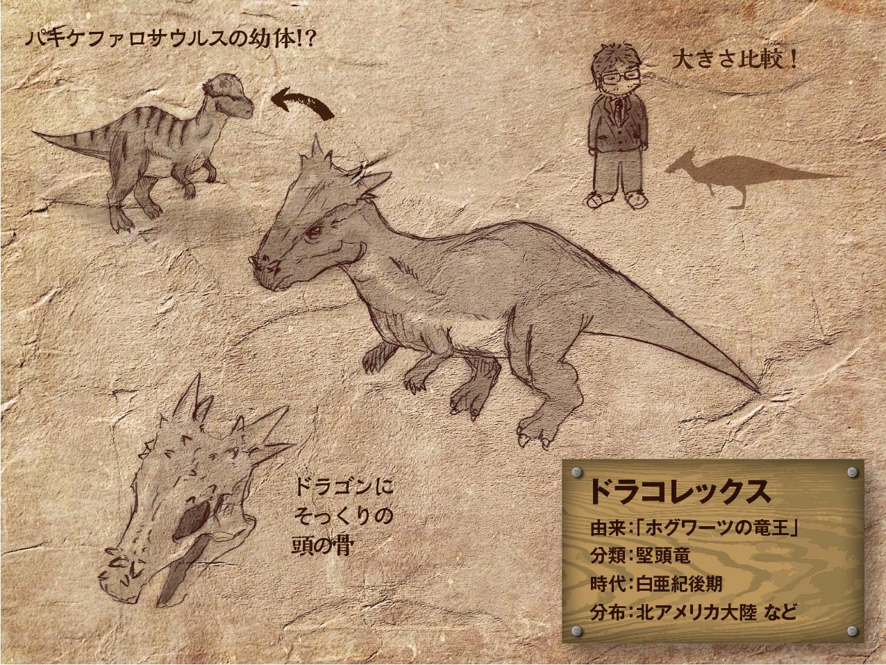 Dracorex.jpg