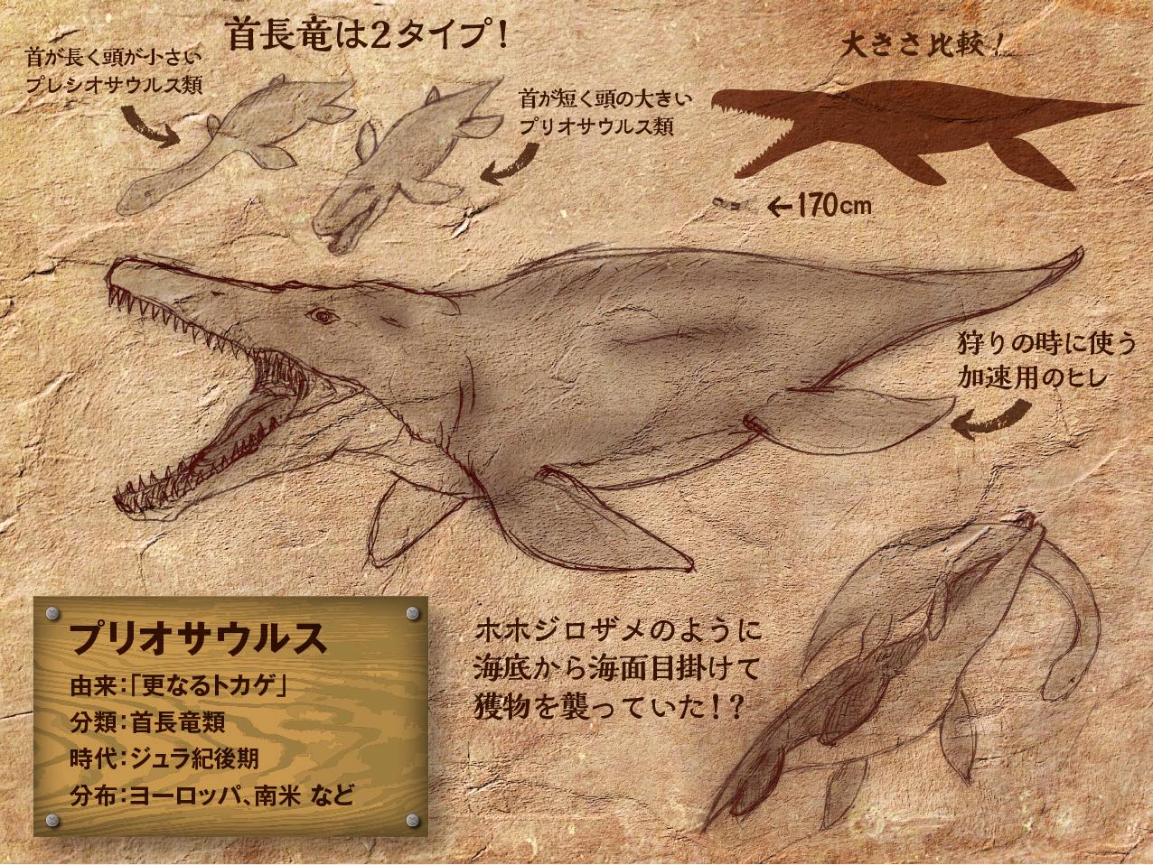 Priosaurusu.jpg