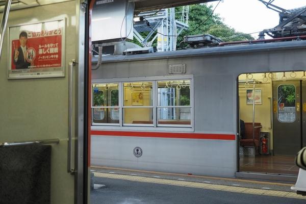 X5240600.jpg