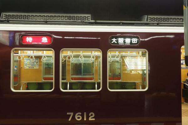 XC050094.jpg