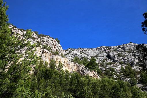 モルジウカランクへの道 青い空、白い岩、緑の森の3色並び