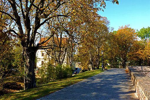 ヴィシェフラッドの丘の石積と紅葉