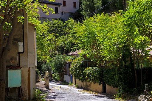 モルジウカランクの村の小路の緑