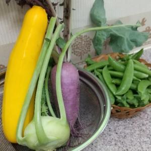 20200608初収穫野菜