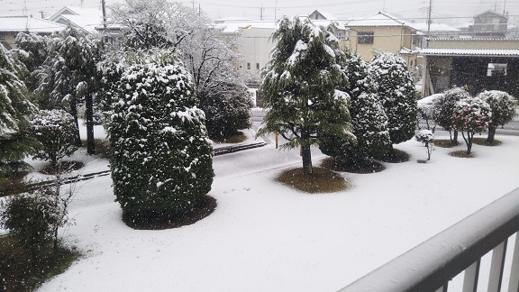 200330_雪