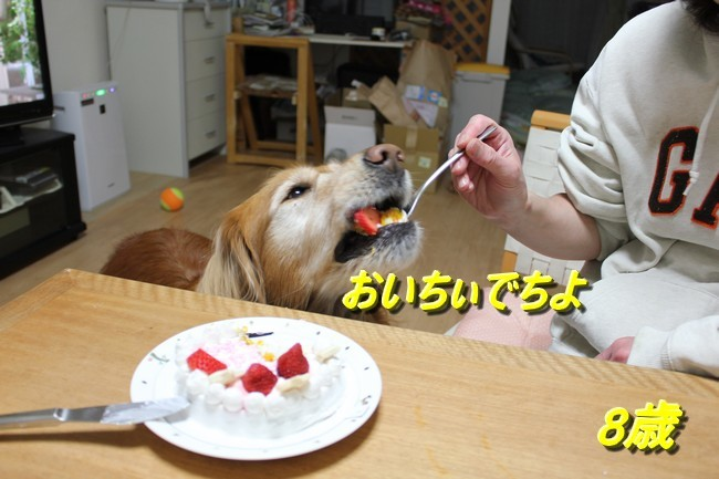 8歳お誕生日 028 - コピー
