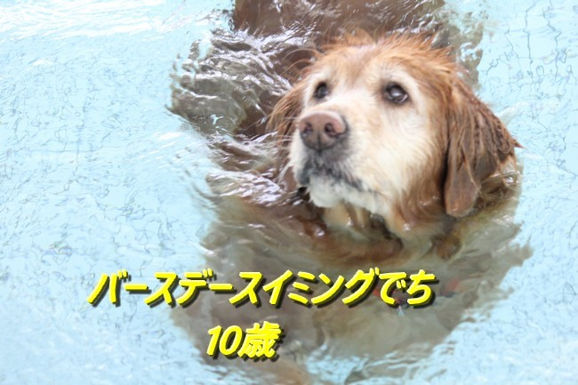10才の誕生日 088 - コピー