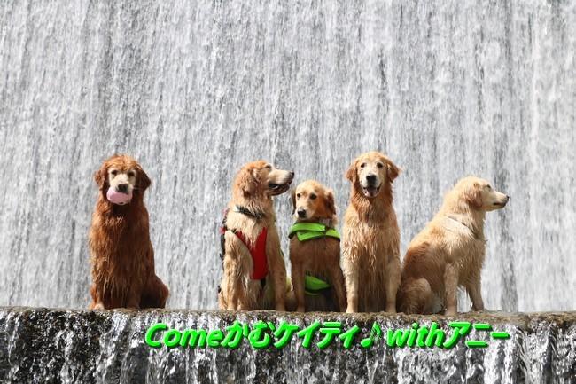ケイティ 川遊び