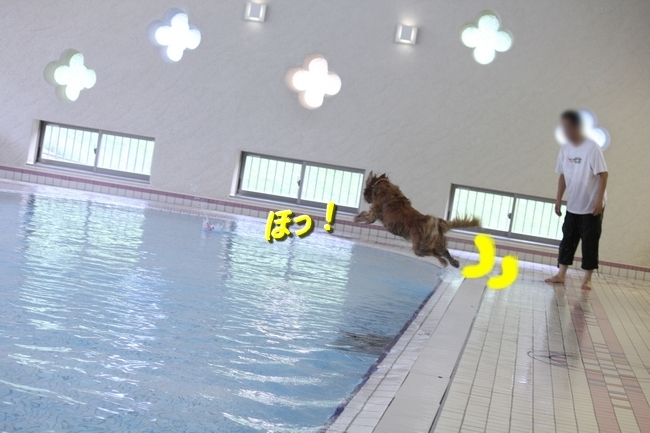 彩音&伝次郎くんとプール8