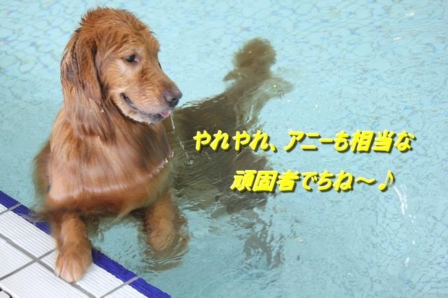 夏休みお水の日 1421
