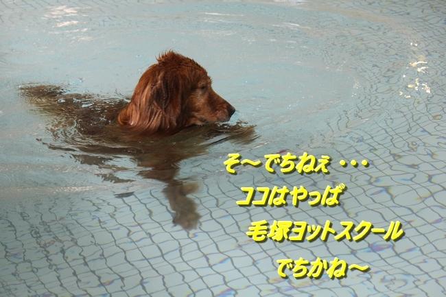 夏休みお水の日 1461