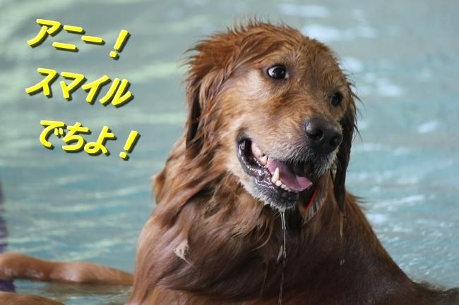 夏休みお水の日 14017