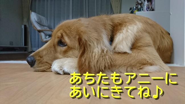 女子会ブログラスト