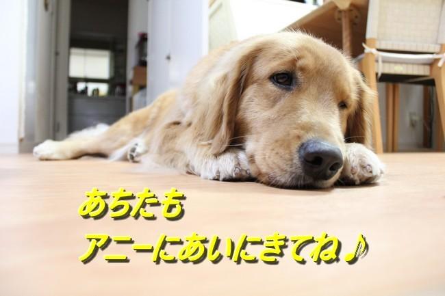 IMG_3263ブログラスト