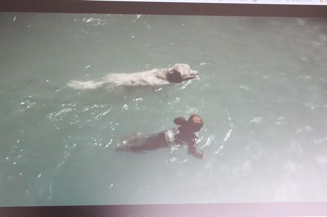 IMG_3282泳ぎ