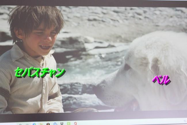 IMG_3283少年とベル