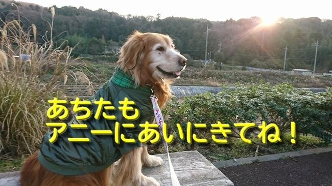 DSC_2398ケイチーニコニコ