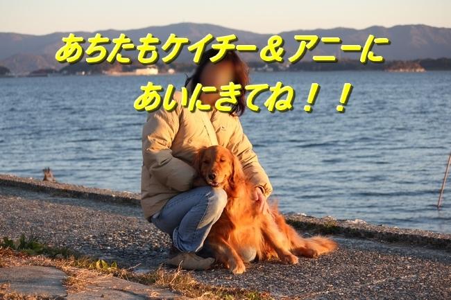 浜名湖1113