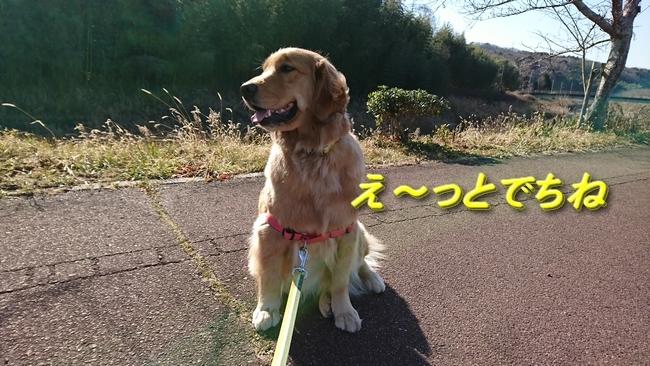 051明石川散歩
