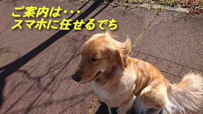 053明石川散歩2
