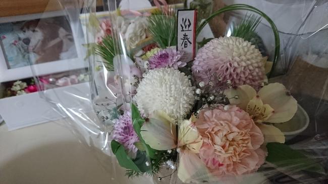 0021月の花