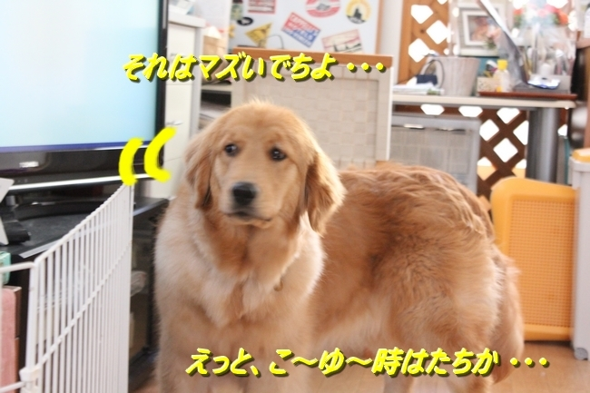 IMG_00777.jpg