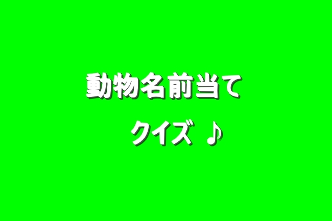 IMG_00878.jpg