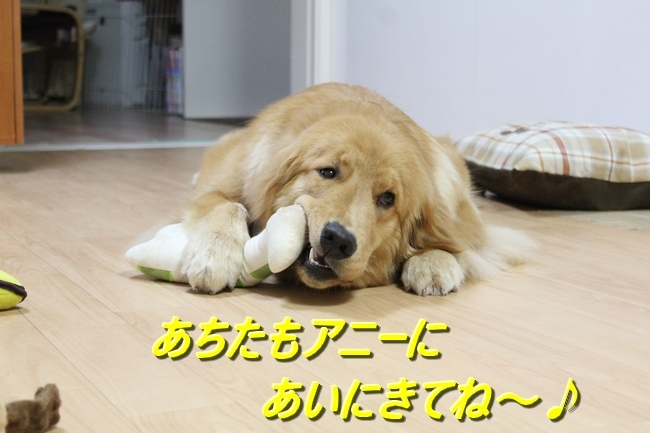 IMG_0104.jpg