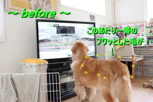 IMG_030301.jpg