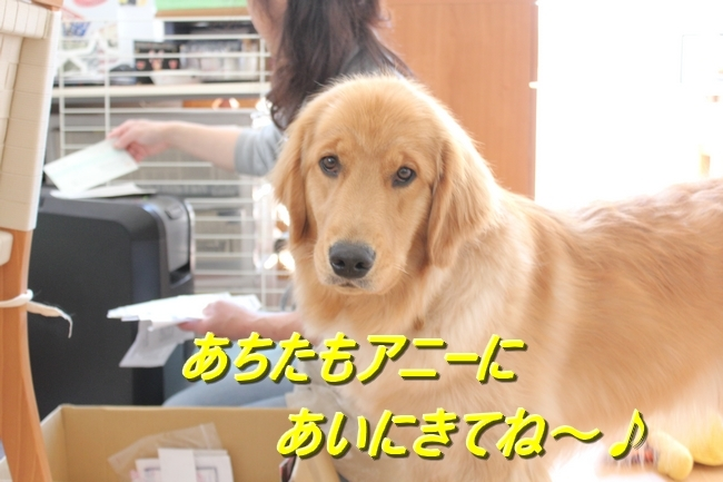 IMG_0553.jpg
