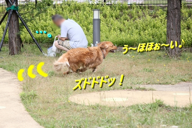 IMG_0706.jpg