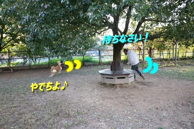 IMG_1527112.jpg