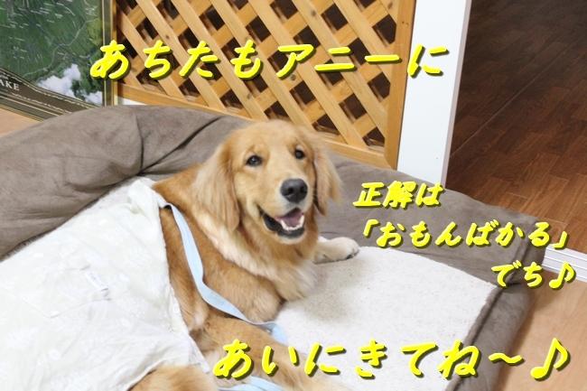 IMG_15701222.jpg